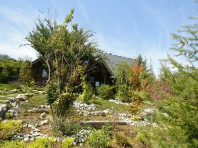 入り口のところのアプローチの植栽はご夫婦で手づくりで石も積み植えられたそうです。
